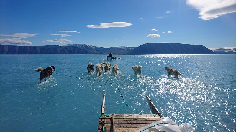Brände in der arktis