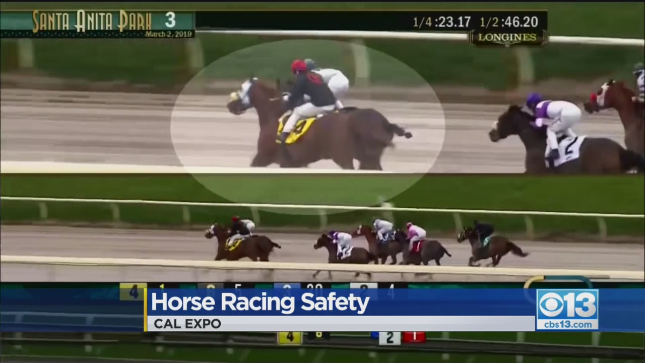 Another Horse Dies At Santa Anita, Bringing Equine Death Toll To 31 Since December