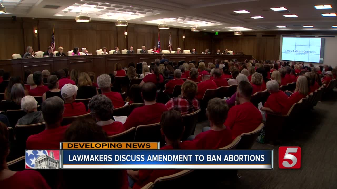 Tennessee Lawmakers Consider Criminalizing Abortion In All Cases