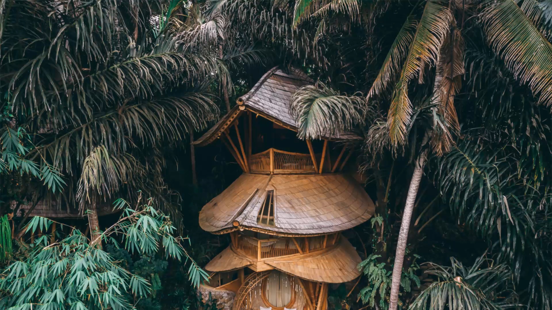 Une spectaculaire cabane en bambou à louer dans la jungle indonésienne