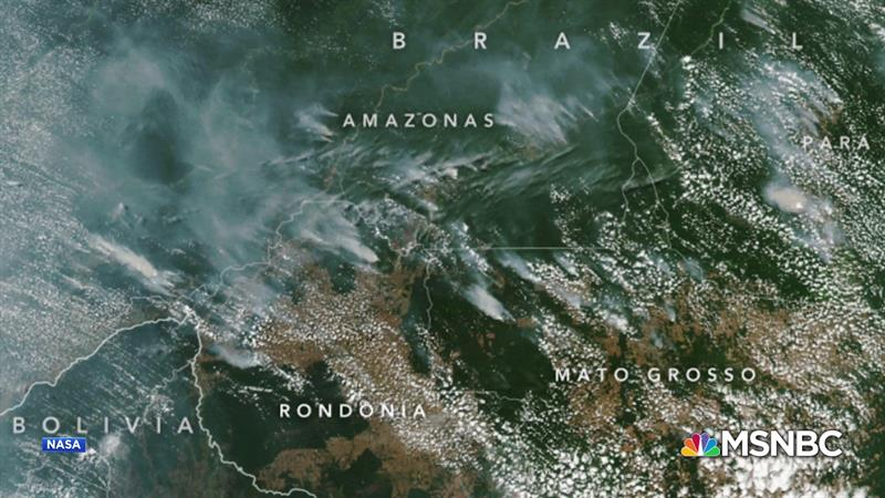 What You Should Know About The Fires Raging In The Amazon