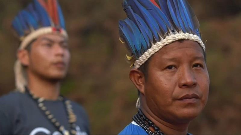 La déforestation explique la majorité des incendies en Amazonie, estime un chercheur
