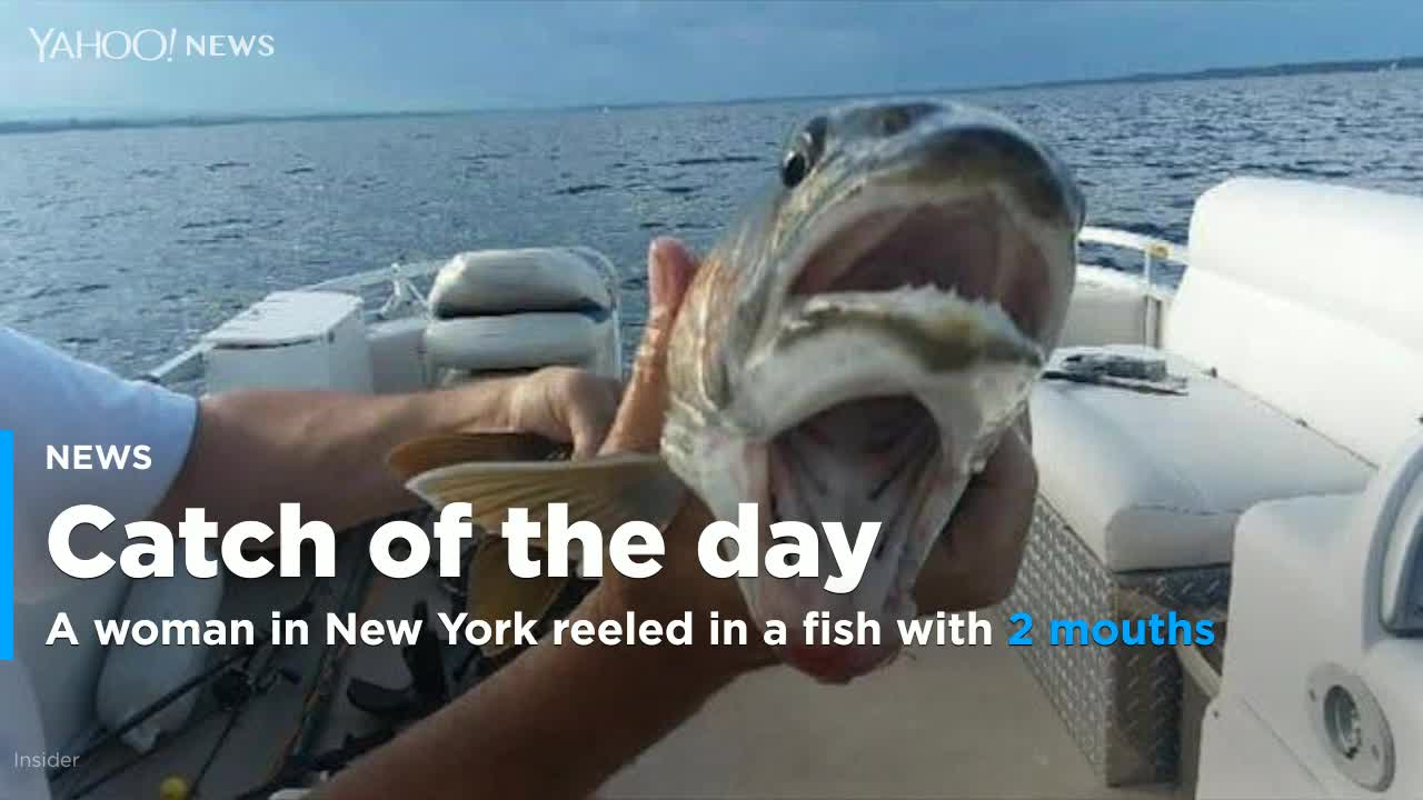Woman stunned after reeling in fish with 'two mouths'