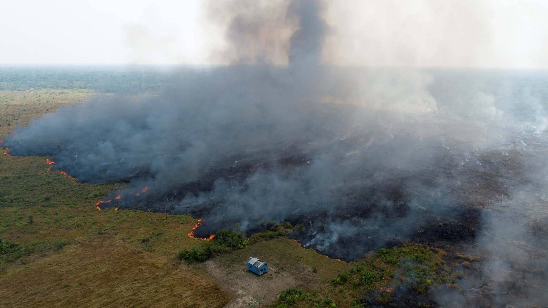 Instagram Scammers Are Using The Fires In The Amazon To Rip People Off