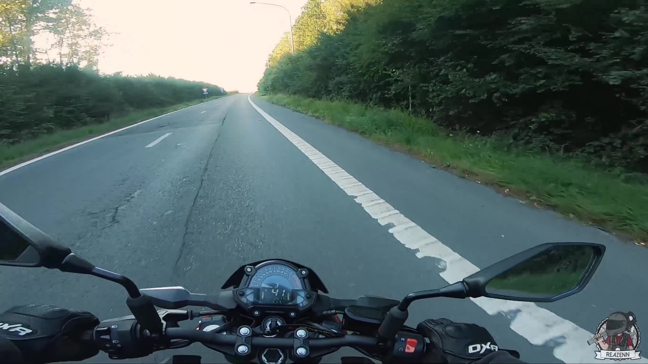 Motorcyclist Stops Traffic To Save Cute Kitten From Busy Road