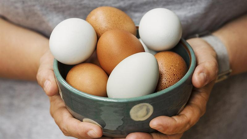 Egg Carton Labels: Here's What All Those Terms Really Mean