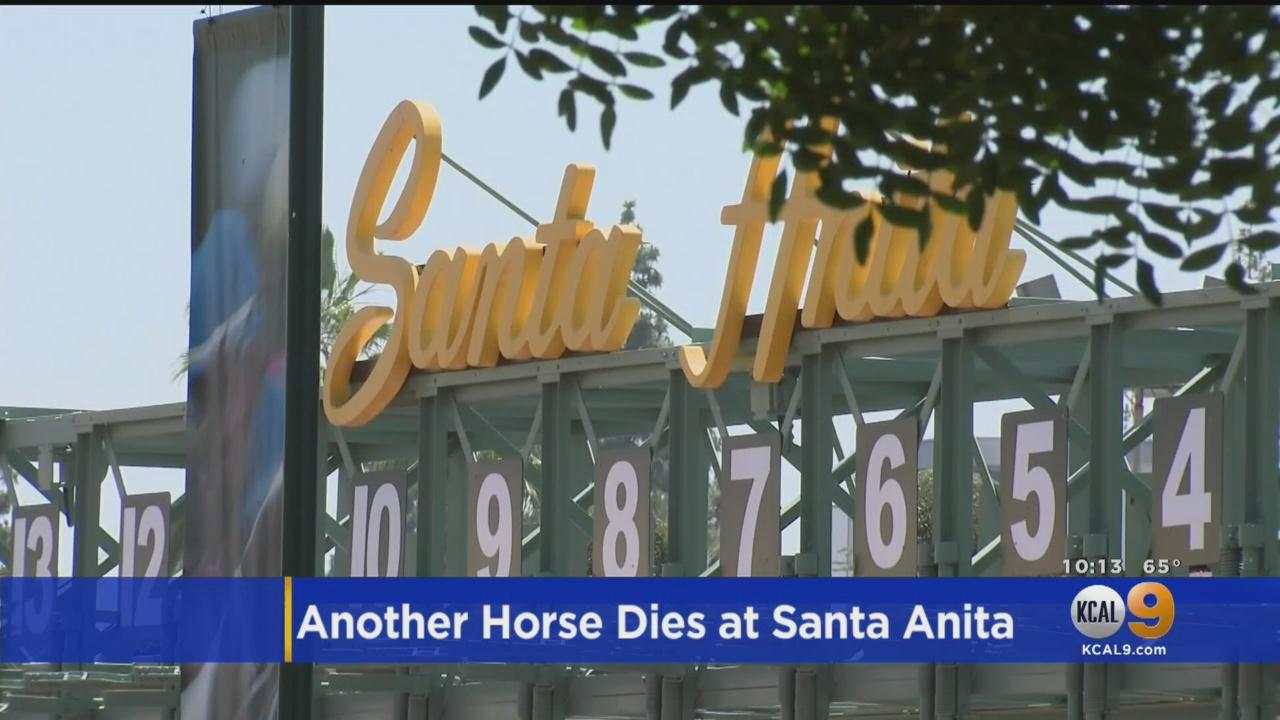 Flipboard 35th Racehorse Dies At Santa Anita Park In Less