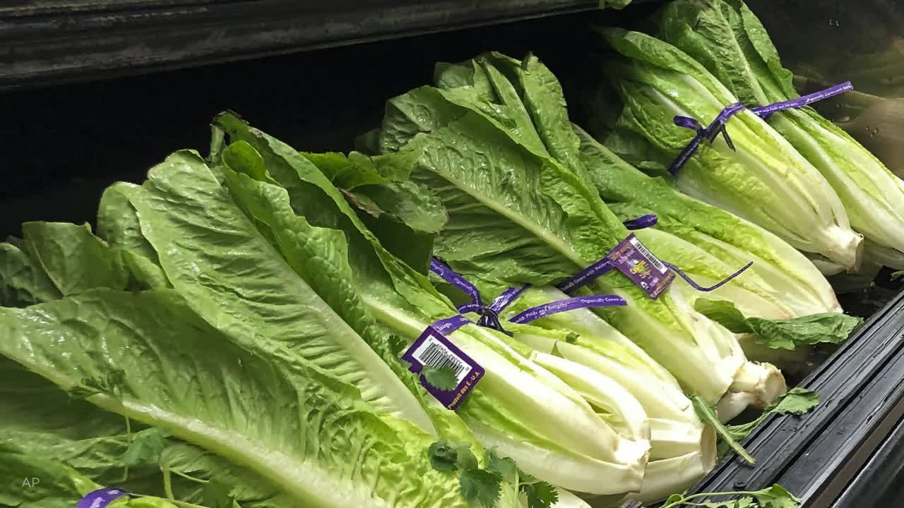 40 E. Coli Infections Linked To Romaine Lettuce, CDC Says