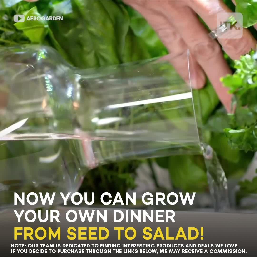 Enjoy farm-to-fork freshness thanks to the AeroGarden