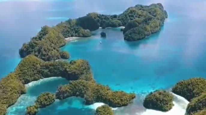 帛琉衝了! 旅遊泡泡啟動 業者估旅費6萬起跳