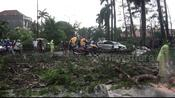 Extreme rainy weather accompanied by strong winds caused damage in Jakarta, Indonesia