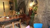 Cafe has mini zoo inside for customers to play with the animals