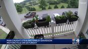 Caught on camera: Harley Davidson 'family heirloom' motorcycle stolen from Greenville apartment complex