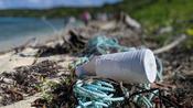 Plastic threatening islands in Caribbean